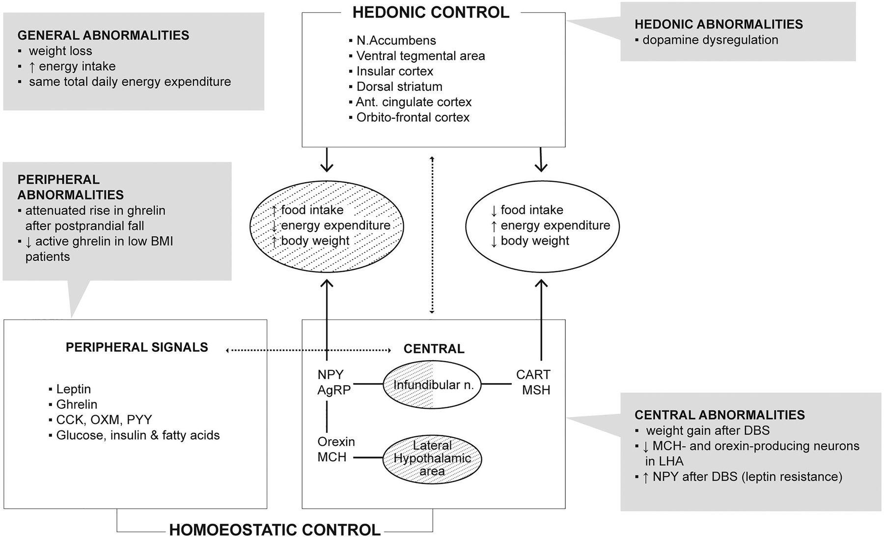 Neuroendocrine abnormalities in Parkinson\'s disease | Journal of ...